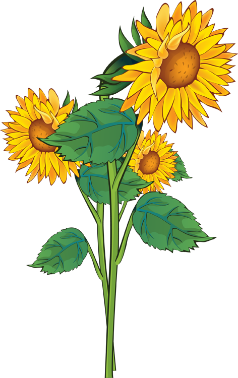 A Bouquet Of Summer Flowers Clip Art