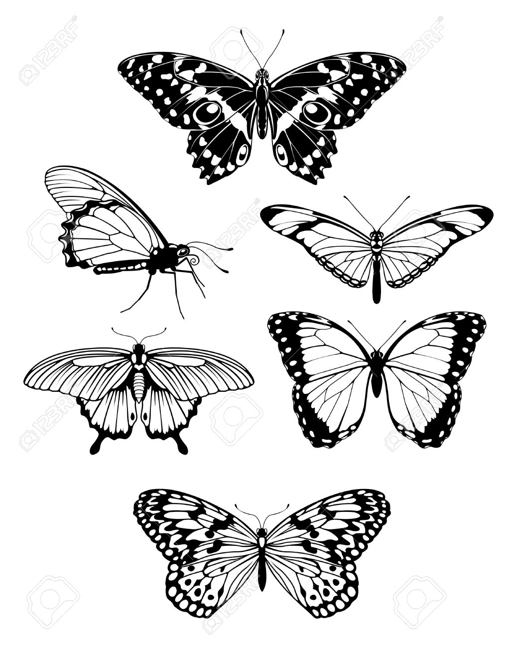 A Set Of Beautiful Stylised Butterfly Outline Silhouettes Royalty