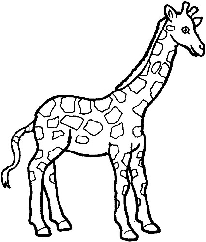 Baby Giraffe Clip Art Black And White Free