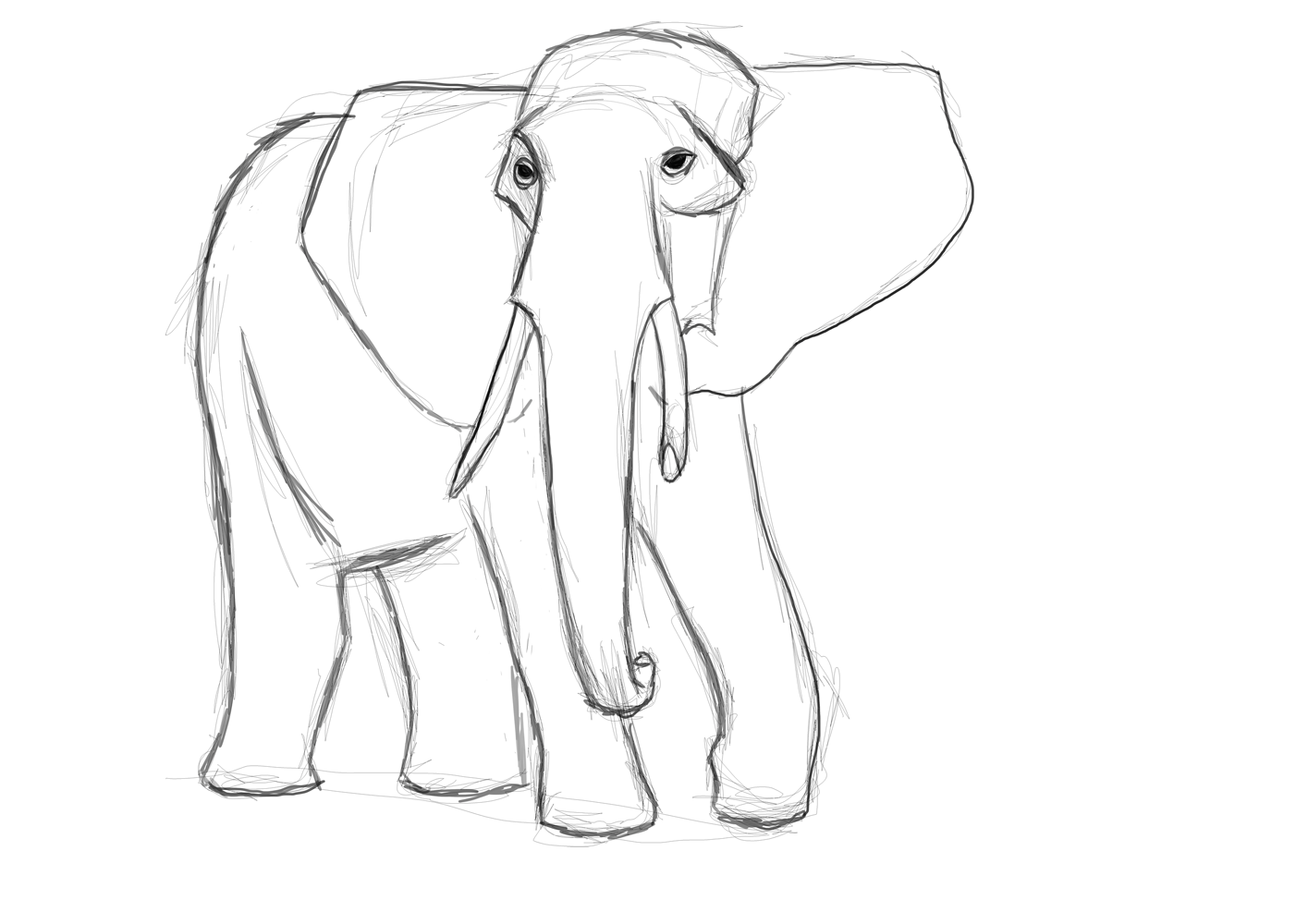 Basic Elephant Outline Images Amp Pictures Becuo