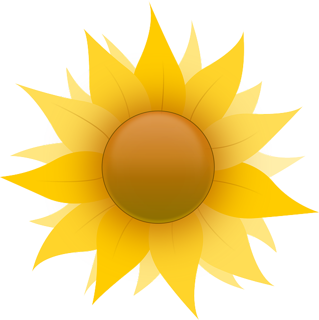Black Icon Outline Yellow Drawing Sun Flower Public Domain