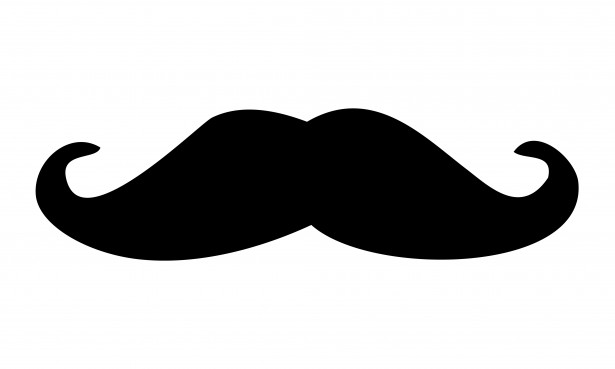 Black Moustache Clipart Free Stock Photo Public Domain Pictures