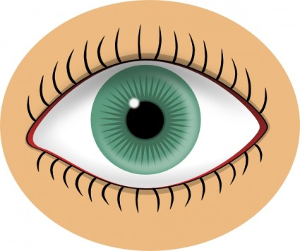 Blue Eye Clip Art Free Vector In Open Office Drawing