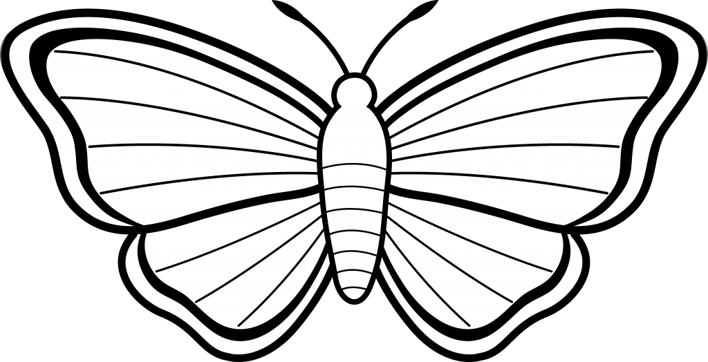 Butterfly Outline Black And White