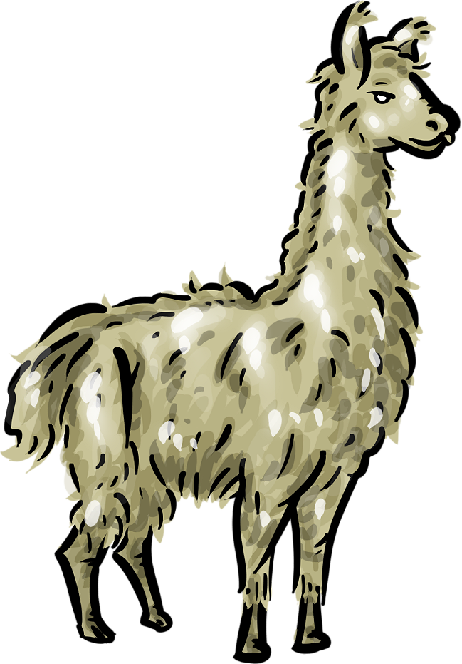 Cartoon Llama Pictures