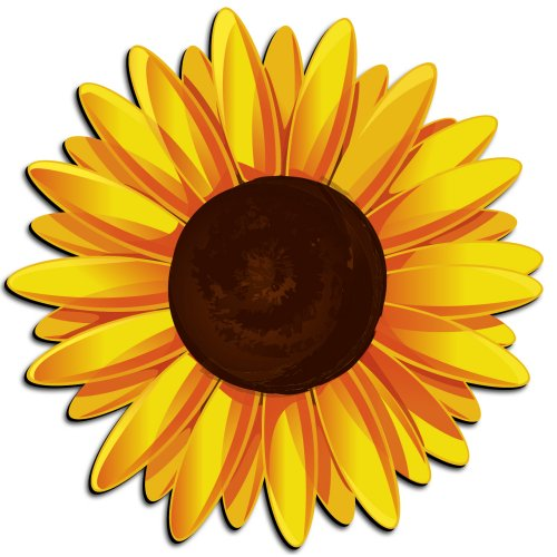 Cartoon Sunflower