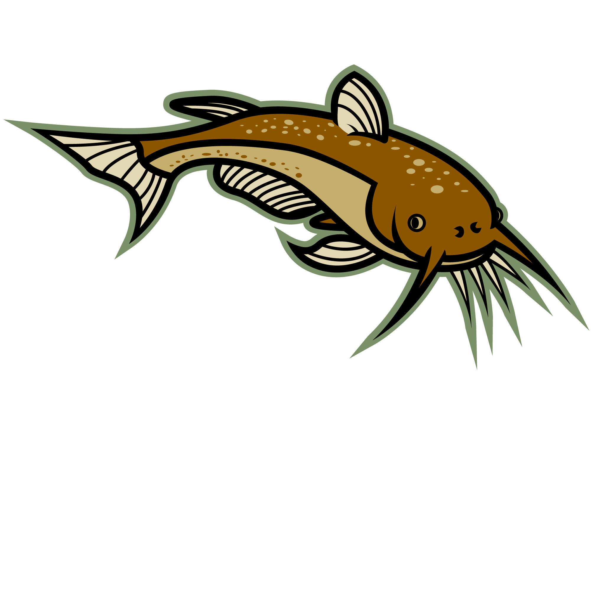 Catfish Cartoon Clipart