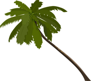 Clip Art Palm Tree