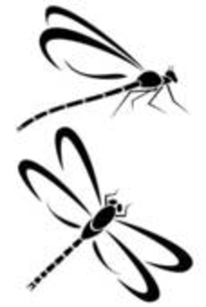 Dragonflies Free Images At Vector Clip Art Online