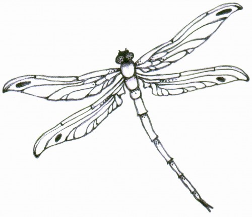 Dragonfly Tattoo Design On Pinterest Dragonfly Tattoo Aztec
