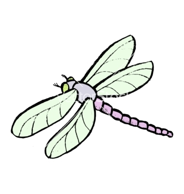Dragonfly Vectorperysty Image Vectorstock