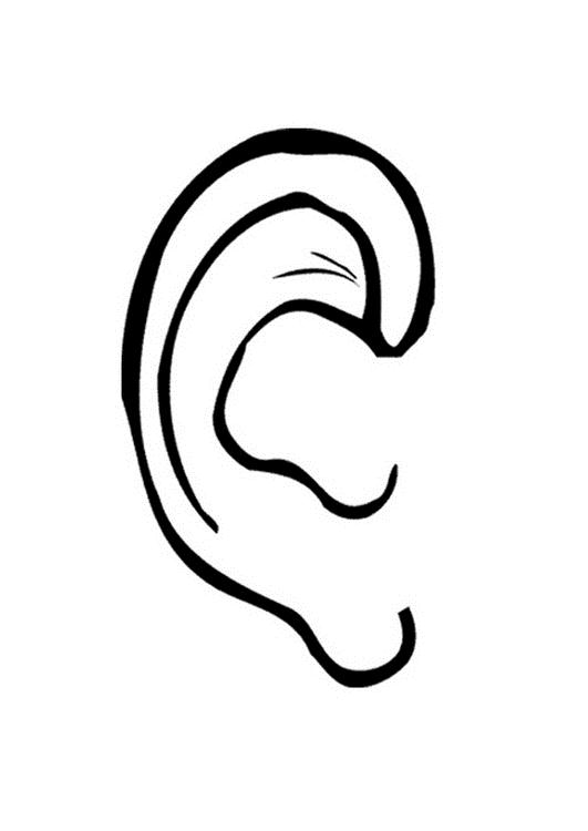 Ear Pictures For Kids