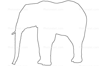 Elephant Outline Line Drawing Baby Images Photography Stock
