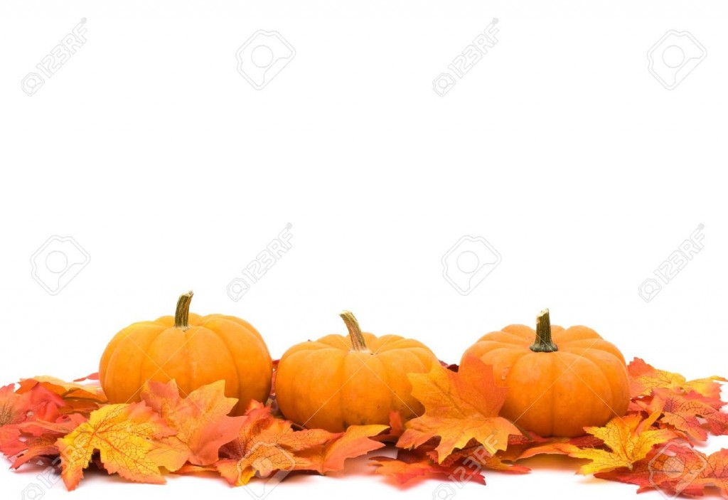 Best Pumpkin Border #1862 - Clipartion.com