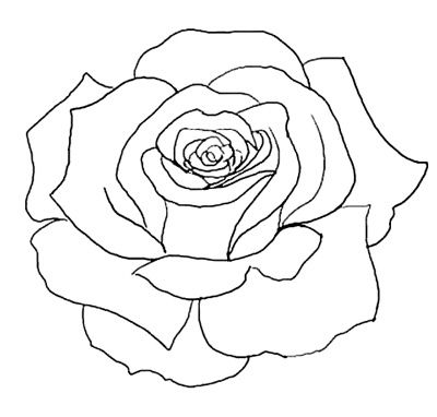 Flower Outline Tattoo On Pinterest Rose Outline Tattoo Rose