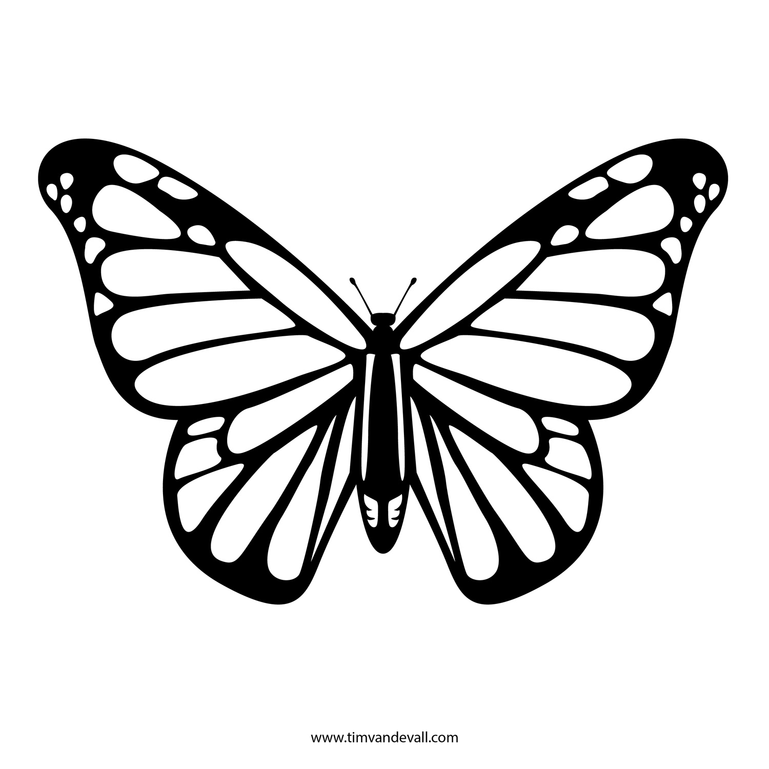 Butterfly outline template. Best clipartion com