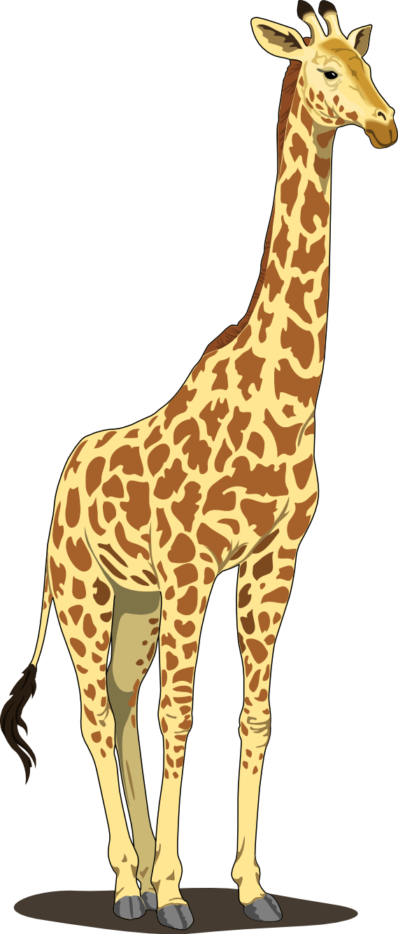 Best Giraffe Clipart #4658 - Clipartion.com