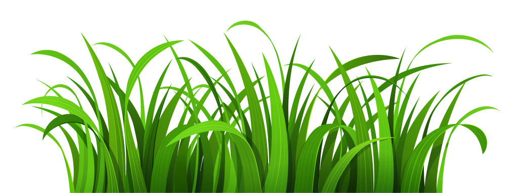 Green Grass Border Clipart Free Clipart Images