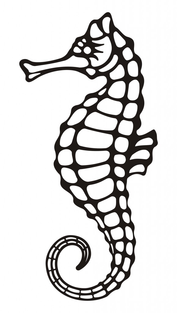 How Do You Draw A Seahorse