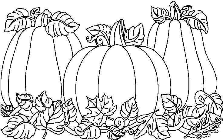 Images Pumpkin Patch Clipart Black And White Page 2
