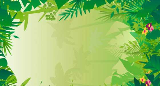 Jungle Background Clipart Vector Magz Free Download Vector