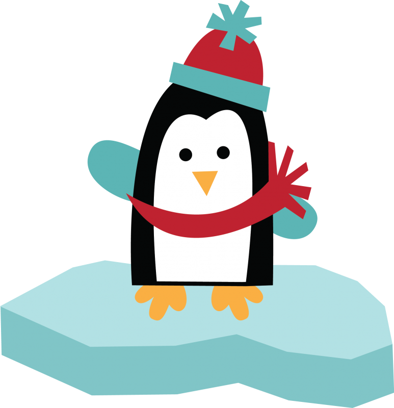 Large Penguin On Ice Png