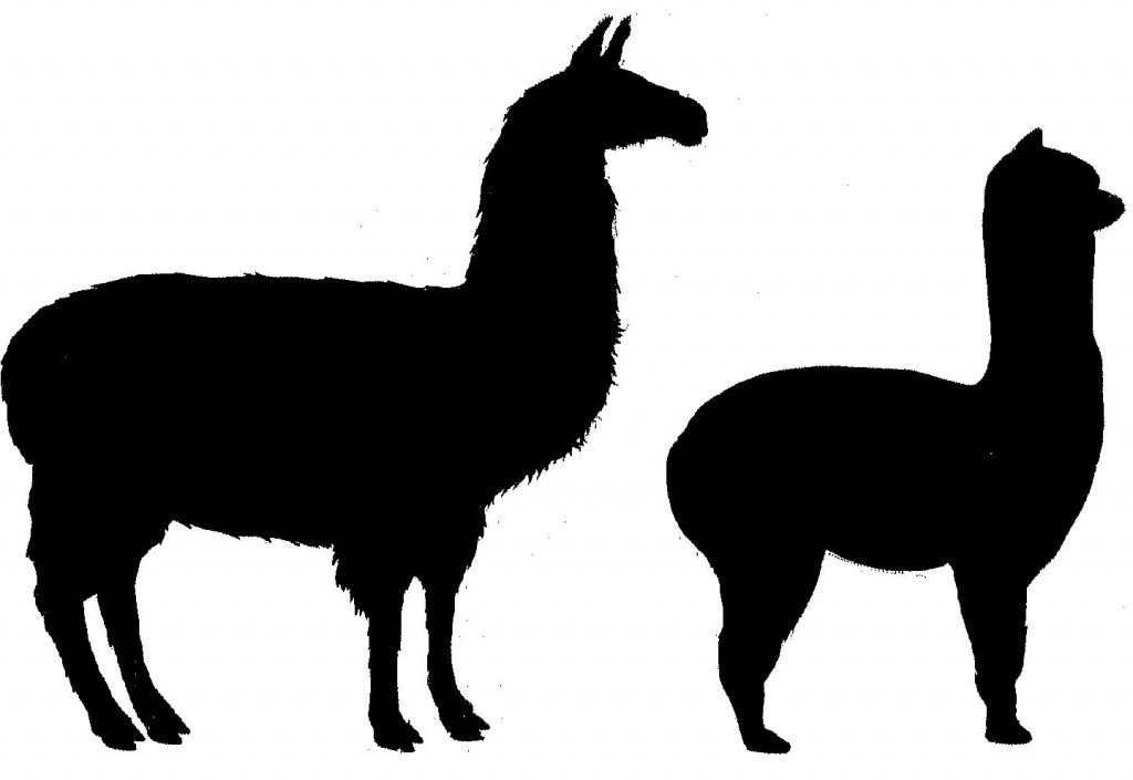 Llama Silhouette Clipart Free Clip Art Images