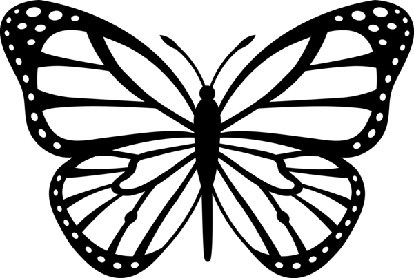 Monarch Butterfly Black White Free Images At Vector