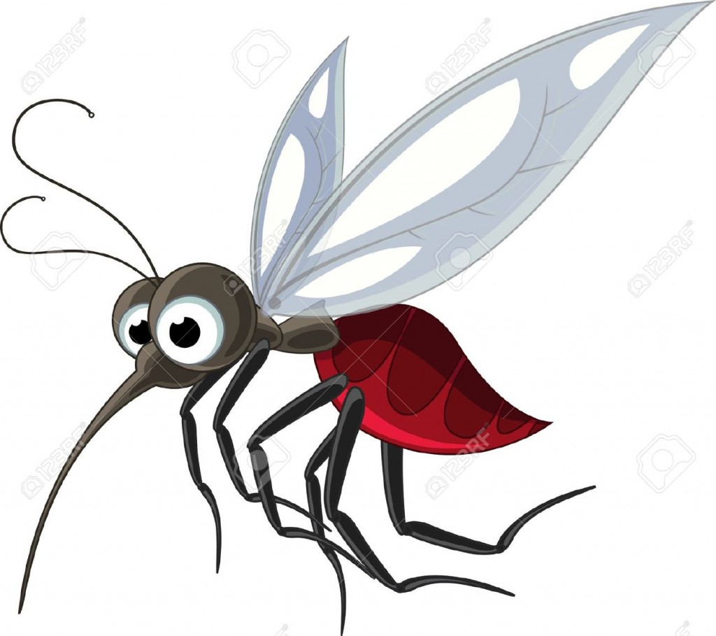 Mosquito Cartoon Stock Vector Illustration And Royalty Free
