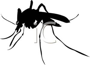 Mosquito Clip Art Silhouette A Realistic Royalty Free Clipart