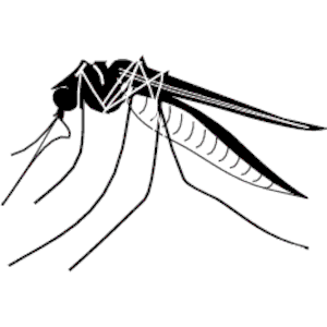 Mosquito Clipart Cliparts Of Mosquito Free Download Wmf Eps