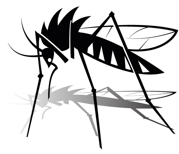 Mosquito Clipart Free Clipart Images