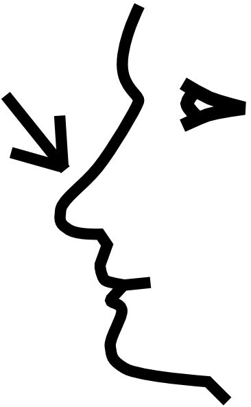 Nose Clipart - Clipartion.com