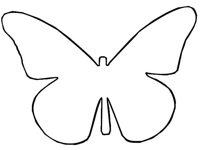 Outline Butterfly Template D Kids Pinterest Butterflies