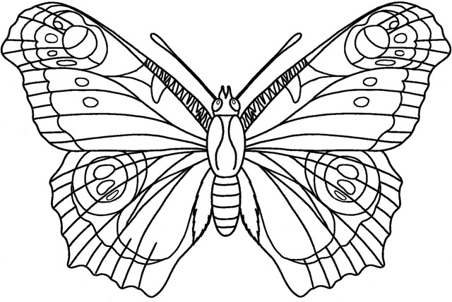simple moth coloring pages