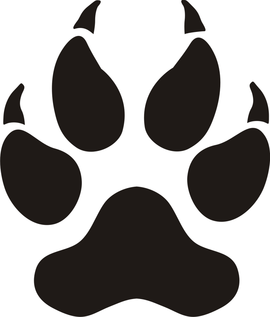 Panther Paw Prints Clip Art Images