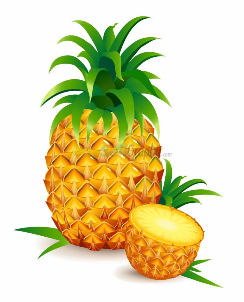 Pineapple Clipart - Clipartion.com