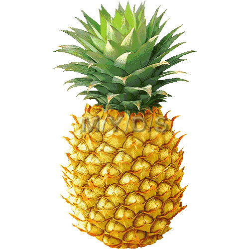 Pineapple Clipart Free Clip Art