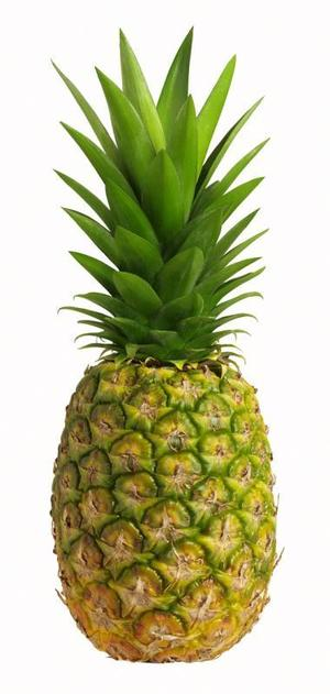 Pineapple Large Free Images At Vector Clip Art