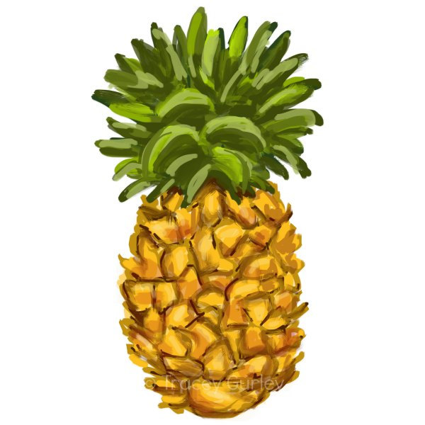 Popular Items For Pineapple Clipart On Etsy
