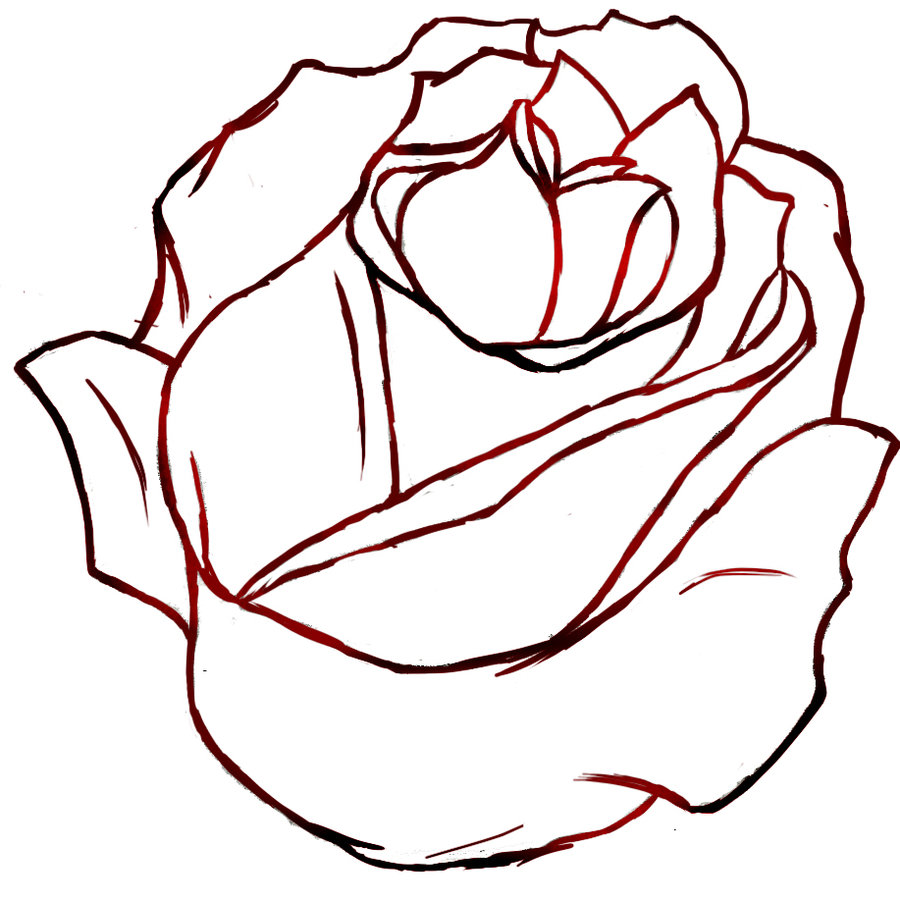 Red Rose Outline Izzyfox On Deviantart