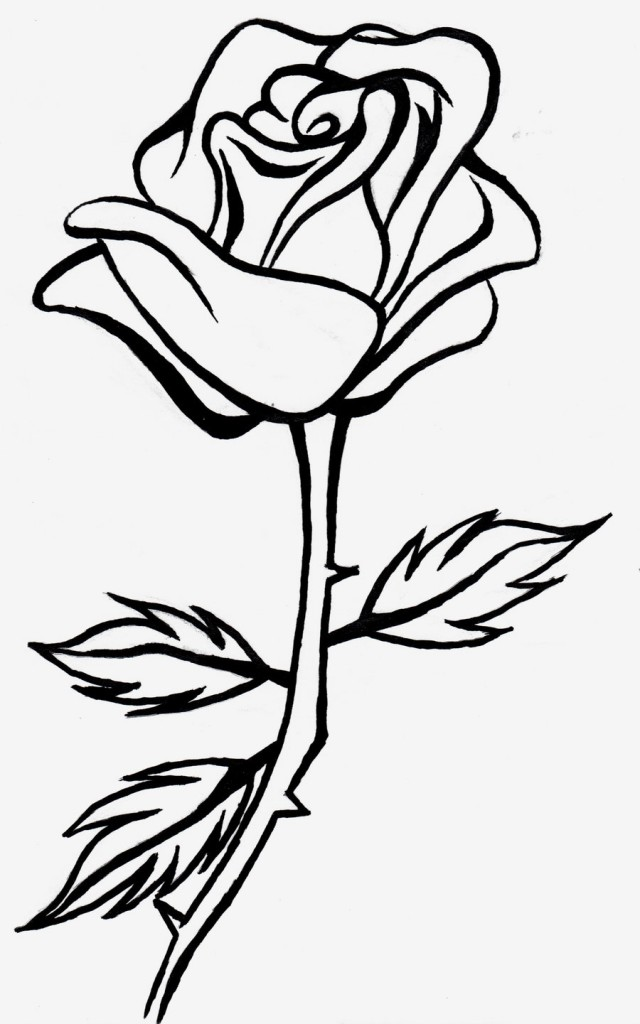 Line Art Rose : Rose outline clipartion