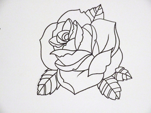Rose Outline 3 Flickr Photo Sharing
