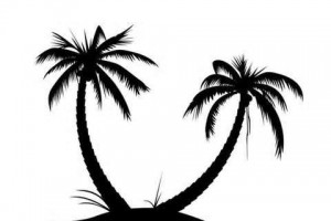 Single Palm Tree Silhouette Clip Art Home Improvement Gallery