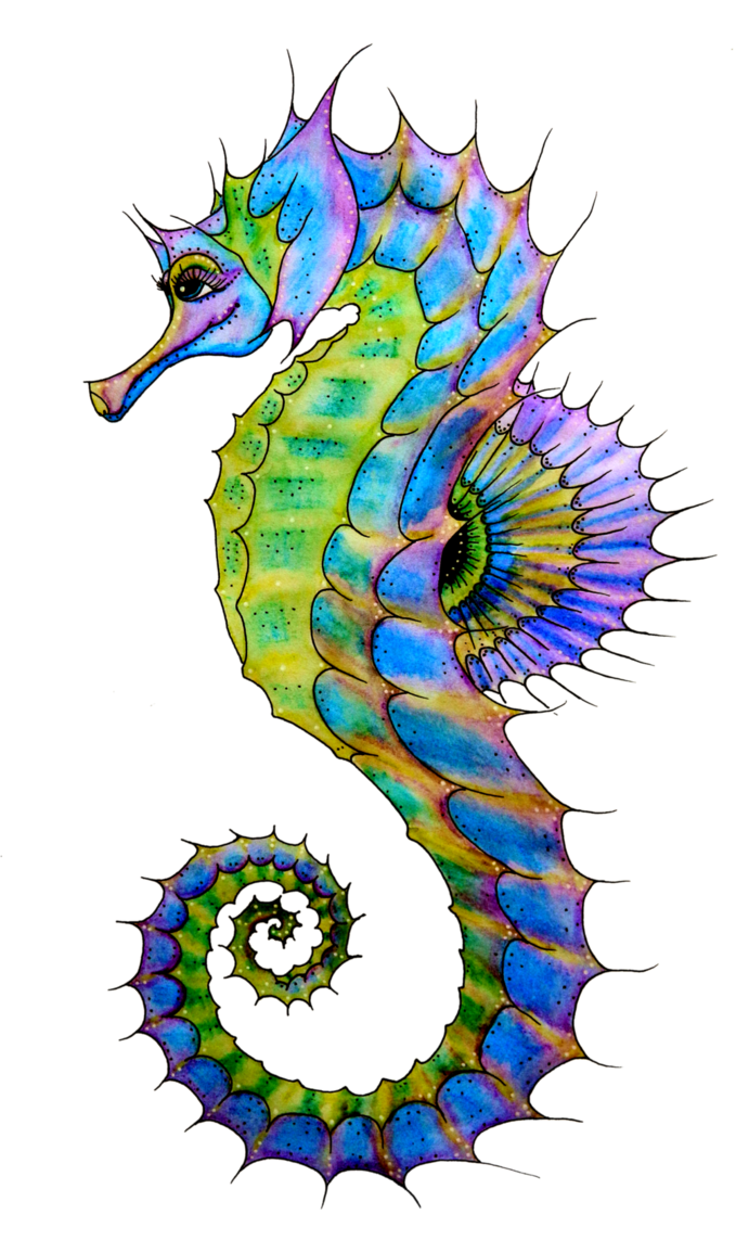 Small Seahorse Clipart Free Clip Art Images