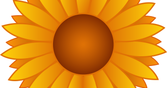 Sunflower Clip Art Floweryweb
