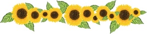 Sunflower Clipart Image Sunflower Banner