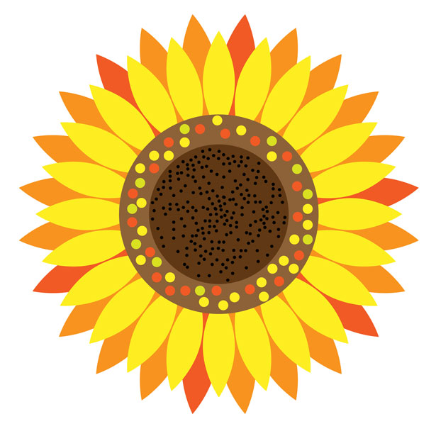 Sunflower Floral Clipart Free Stock Photo Public Domain Pictures