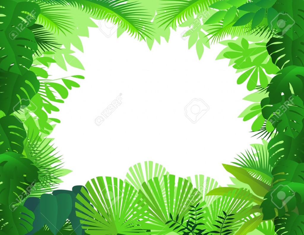 Tropical Rainforest Stock Illustrations Cliparts And Royalty Free