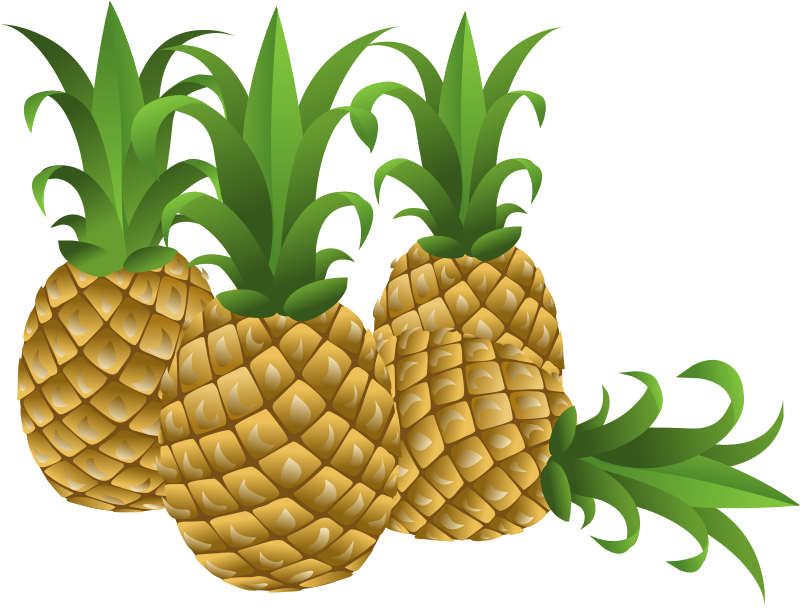 Welcome Pineapple Clipart Black And White Clip Art Clipart